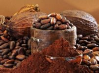 Register Now: A rare opportunity to experience Sacred Chocolate along with Sacred Fire