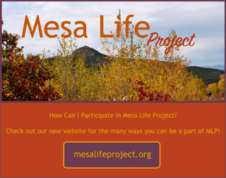sacred-fire-community-mesa-life-project